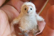 Felted Creations / by Susan Birky