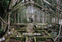 Ruinned interiors