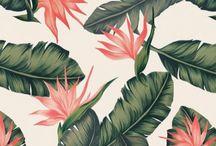 Flowers Printed