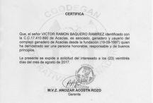 certificado coodegan