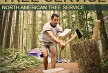 Services / by North American Tree Service