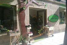 Gadea flores  Vigo ( Spain)