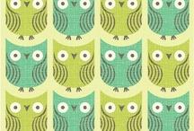Owl, Bird