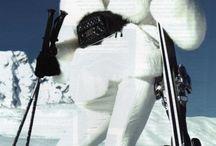 skiing & snowboarding...c'est cool
