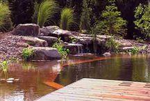 Biologic and Natural Pools and Lakes