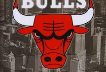 BULLS / Chicago Bulls / by Alisha Smallwood