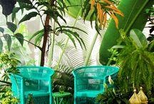 Tropical jungle styl