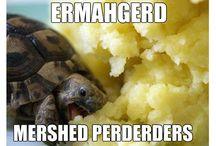 Bahahaha <3 / by Crissy Bee
