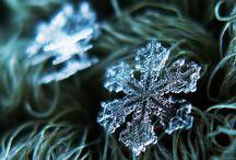 Snowflakes / Photography etc.