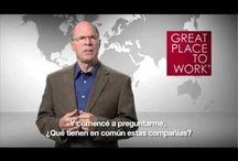 Sobre Great Place to Work