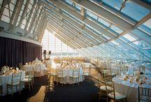 Adler Planetarium Wedding, Chicago IL