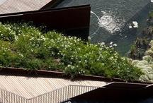 - Landscape architecture -