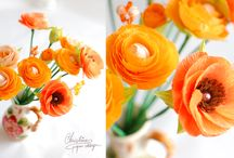 Paper flowers - RANUNCULUS / A collection of paper ranunculus, handcrafted by Christine paper design ...colors, shapes and details.