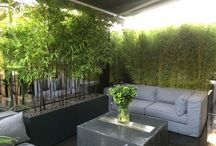 Project Hays Mews / Hays Mews - Contemporary London Rooftop Terrace, by Aralia Garden Design  http://www.aralia.org.uk/