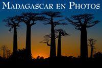 Madagascar en Photos