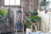 Spring light! SS16 / Let the spring light shine in your home!