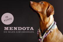 Schönes für... Hund & Mensch mit Hund / Ausgesuchte Dinge die für Hundeliebehaber interessant sind.