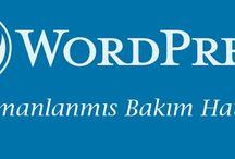 WordPress / WordPress'e dair her şey… | Bilgi Faresi