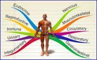 animal physiology mcqs