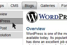 clickwordpress