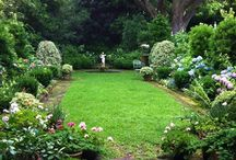 Garden: Floral arrangements