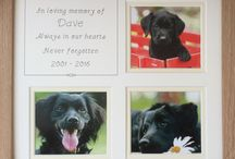 Personalised Pet Photo Frames / Personalise with pet's name(s) and insert photo of your pet(s) in our personalised photo frames