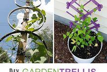 gardening/veradas