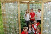 Ogród szkollny