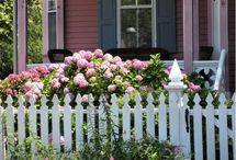 Gardening / Landscaping ideas / by Jessica Rose of VOL25