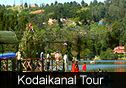 kodaikanal tour package from England.