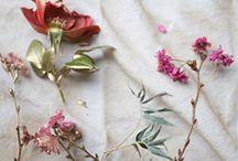 Botanical Beauty S/S 2015