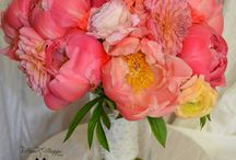 Pinks & Corals / Wedding floral creations in Pinks, Corals & Blush