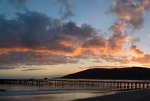 Avila Beach / Just 2 miles from Sycamore. A great local hangout. Perfect beach, pier, shopping, wine, great food, just park and walk around.  / by Sycamore Springs
