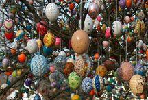 Holiday Creations / by Barbara Tappa