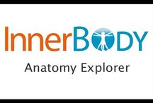 Anatomy & Cell Biology / Web resources for Anatomy & Physiology.