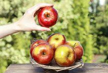 Μήλο ιδιότητες και θρεπτική αξία / Ένα μήλο την ημέρα το γιατρό τον κάνει πέρα!