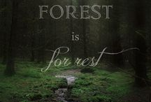 Foreste