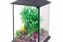 Aquarium Inspiration / Aquarium inspiration