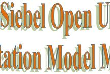Siebel Open UI Customization - Presentation Model Methods