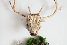 Christmas 2015 / Christmas
