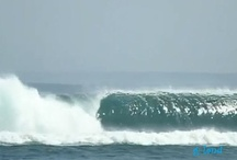 Pumping Perfection / by Sea Man 🏄