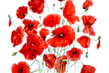 ANZAC Day-Rememberence Day