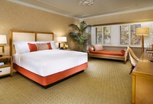 All New Rooms & Suites / Brand new, spacious, and simply gorgeous rooms and suites at Tropicana Las Vegas. / by The NEW Tropicana Las Vegas - A DoubleTree by Hilton