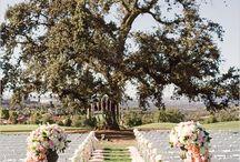 Outdoor & Garden Weddings