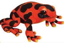 Stuffed Frogs