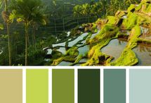 Colors For House / Color pallets I like for the new house / by Tiffany Smith