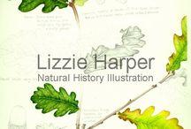 Lizzie Harper