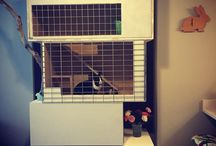 Rabbit Penthouse / Amazing rabbit hutch, hand crafted and custom made!