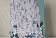Stampin'Up 2014-15 Catty / by Angie Shafer-Jarman
