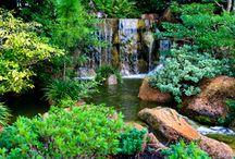 Japanese Gardens | Flowers | Gardening / Japanese | Flower and Garden Design / by Tamara Gold